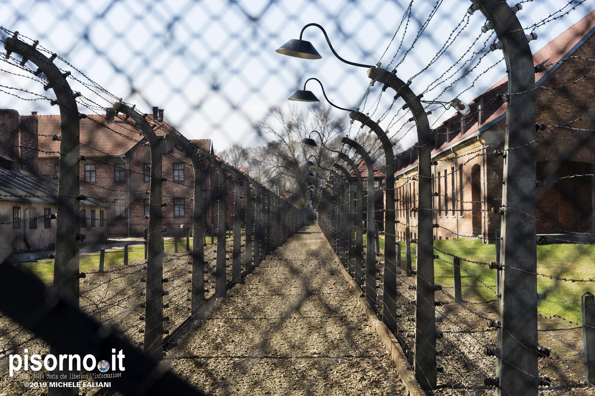 Auschwitz 03