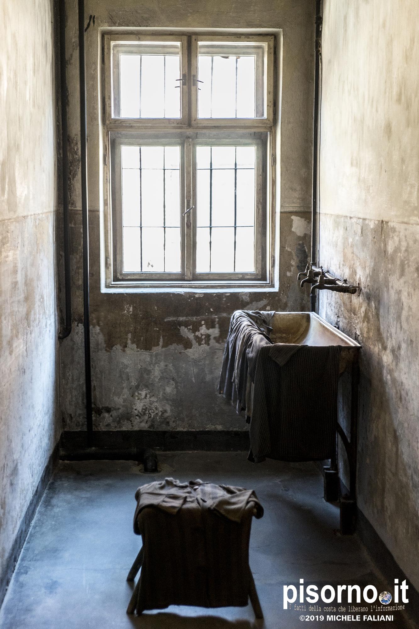 Auschwitz 35