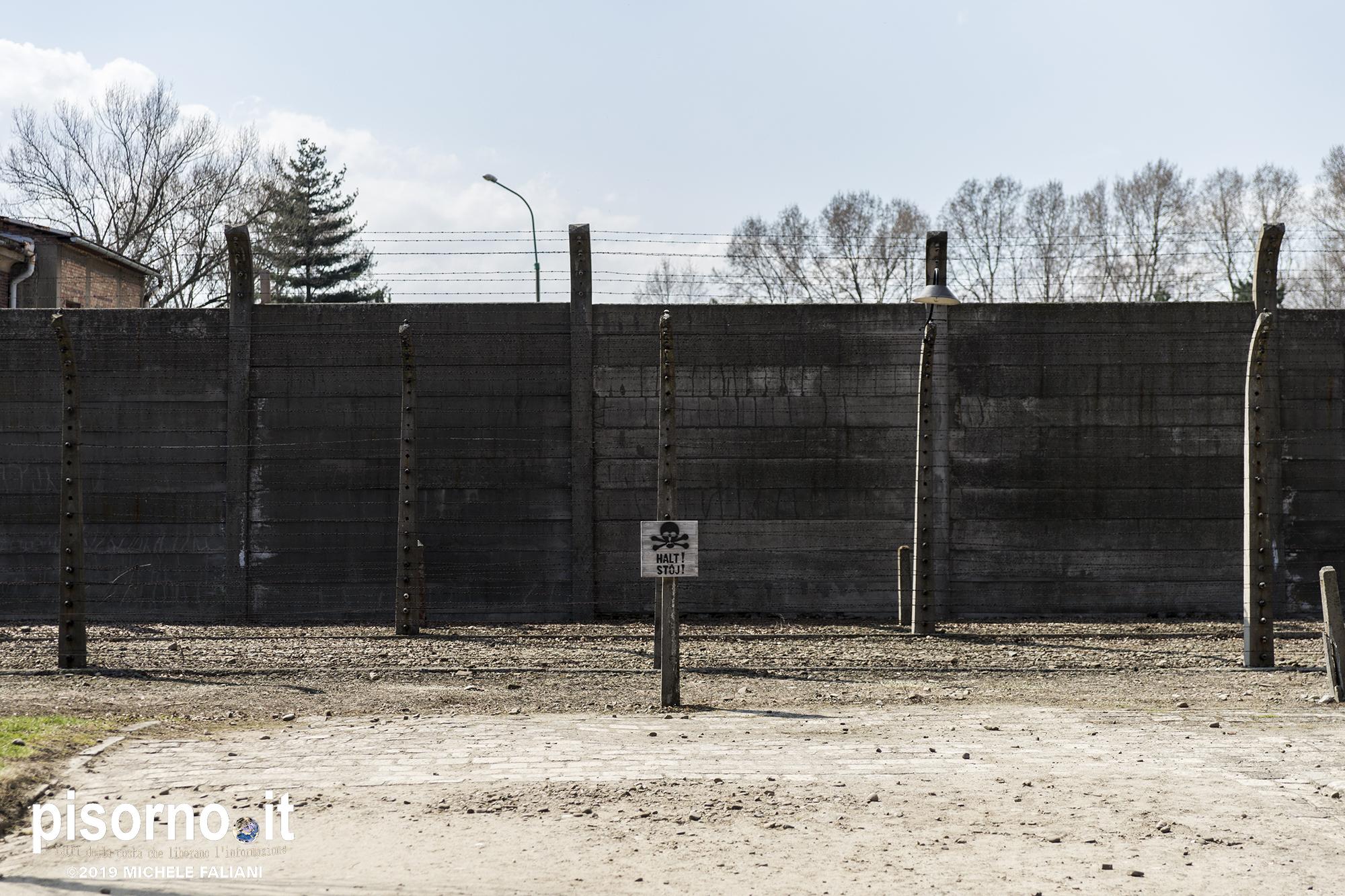 Auschwitz 40