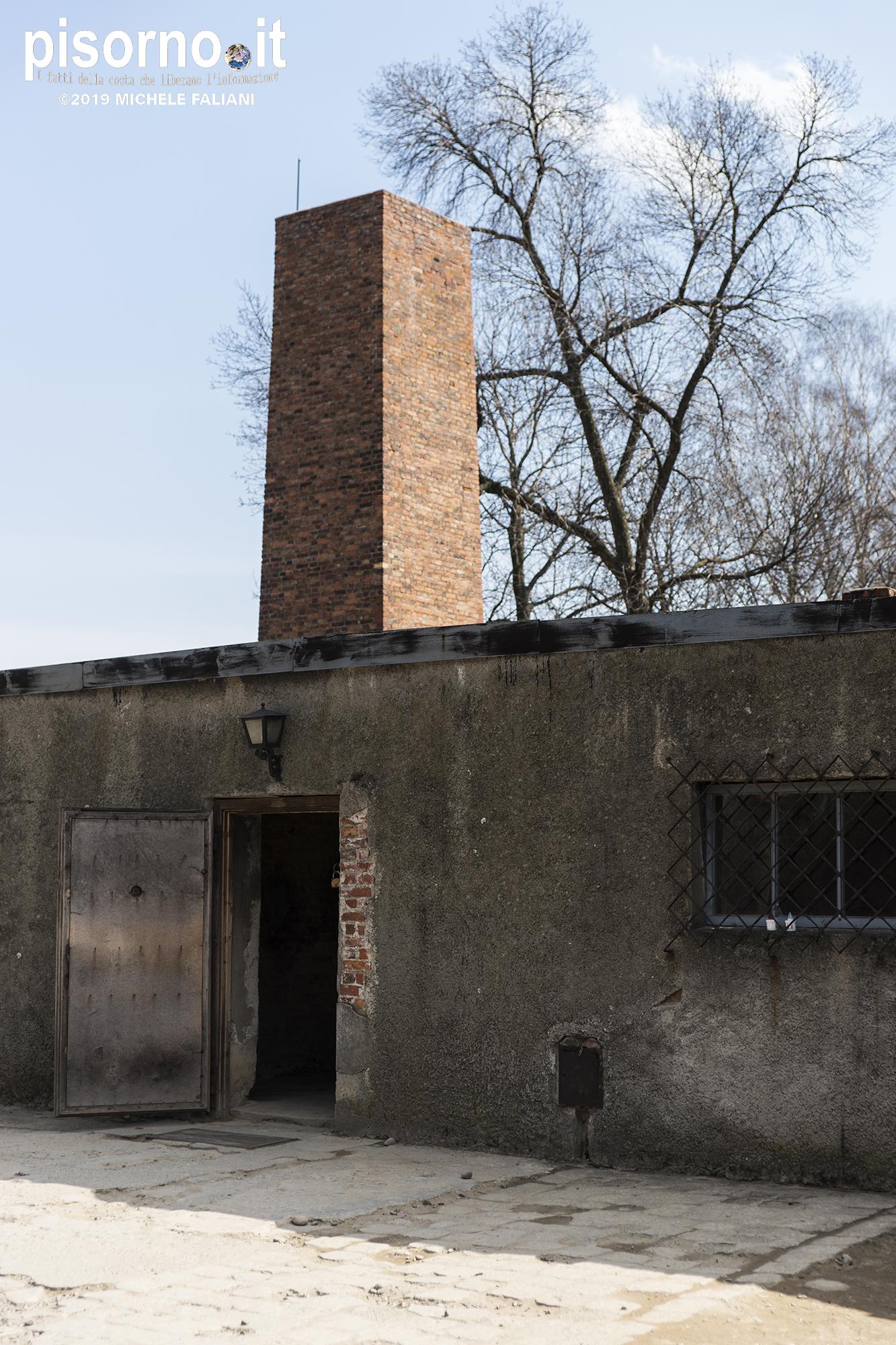 Auschwitz 46