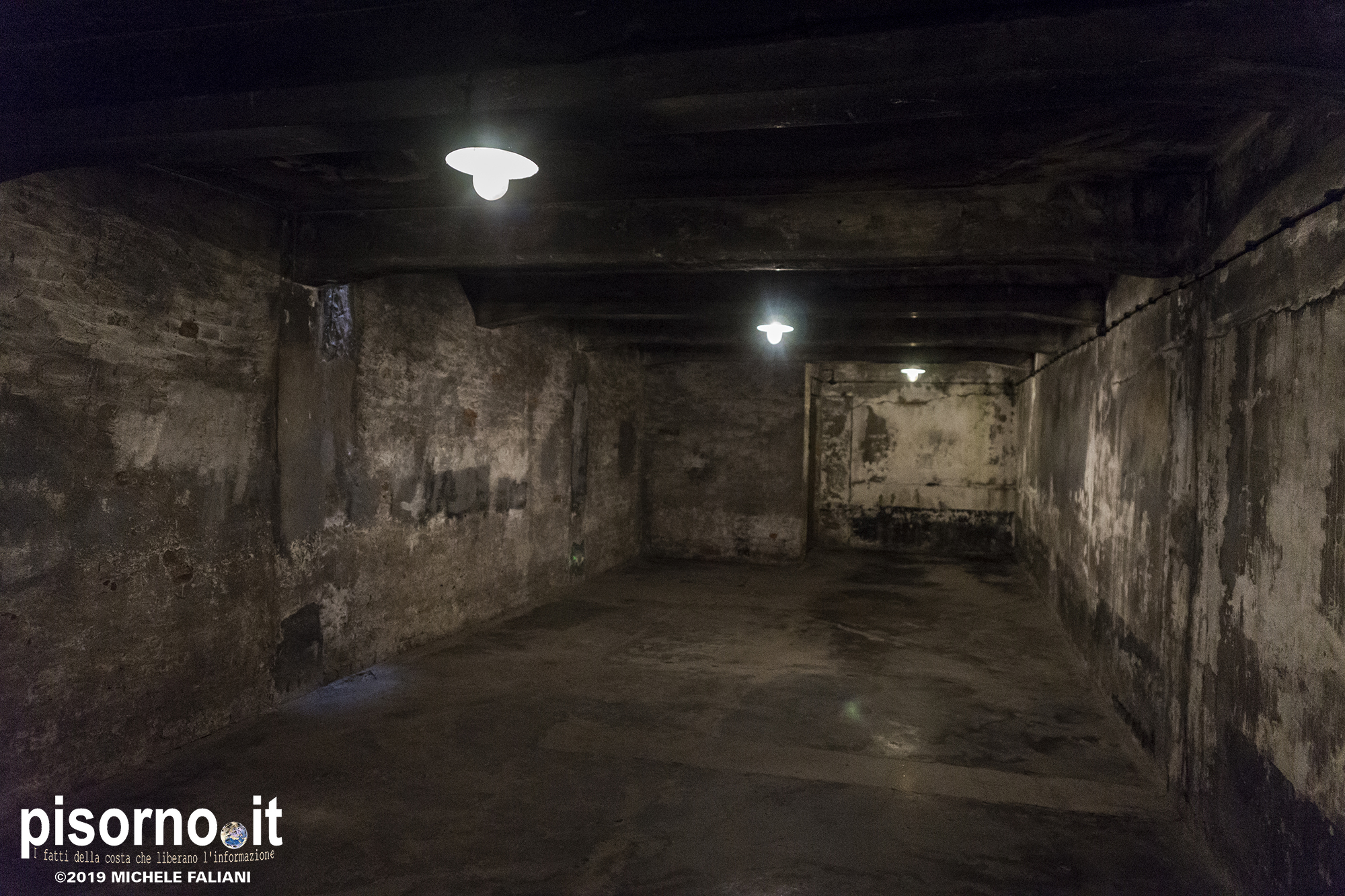 Auschwitz 47