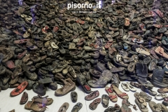 Auschwitz 19