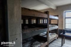 Auschwitz 32