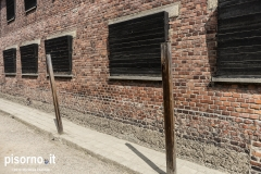 Auschwitz 37