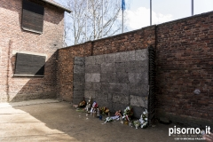 Auschwitz 39