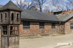 Auschwitz 42
