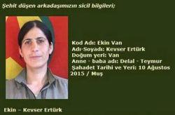 kurdi Kevser Eltürk.