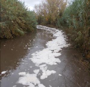 fiume-fine-rosignano
