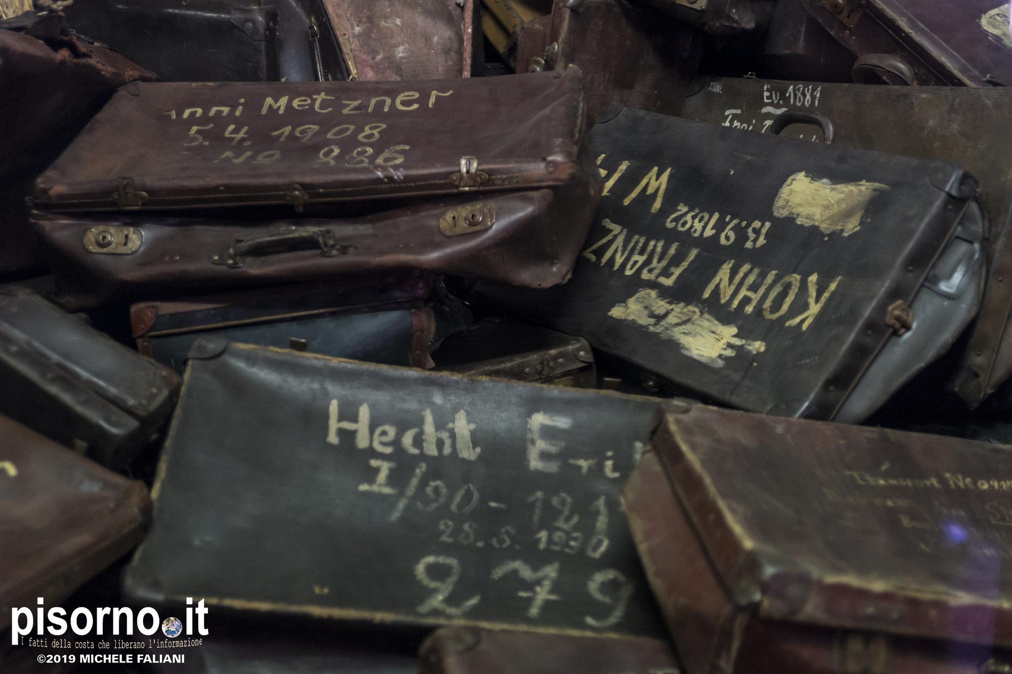 Auschwitz 17