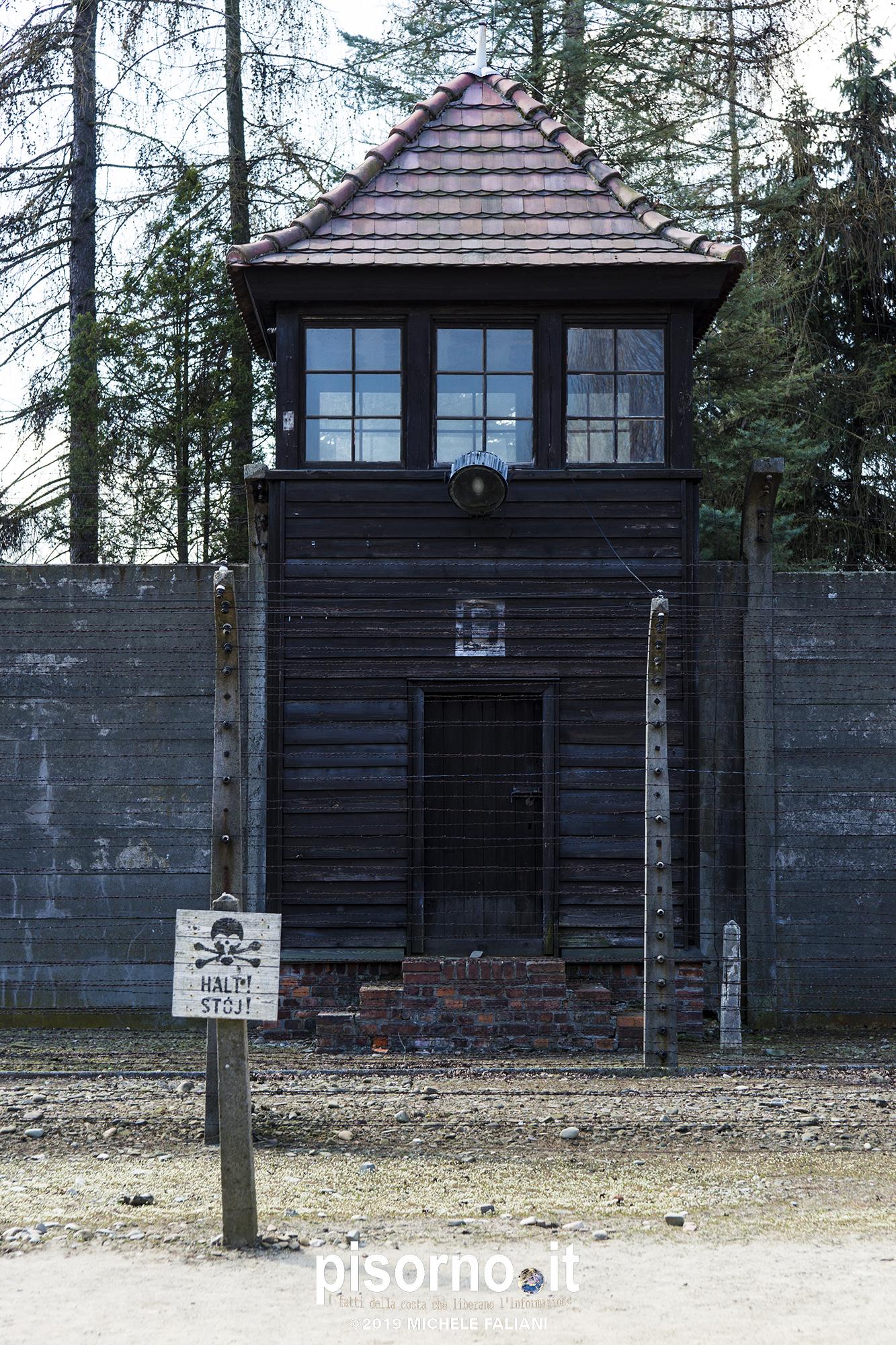 Auschwitz 28