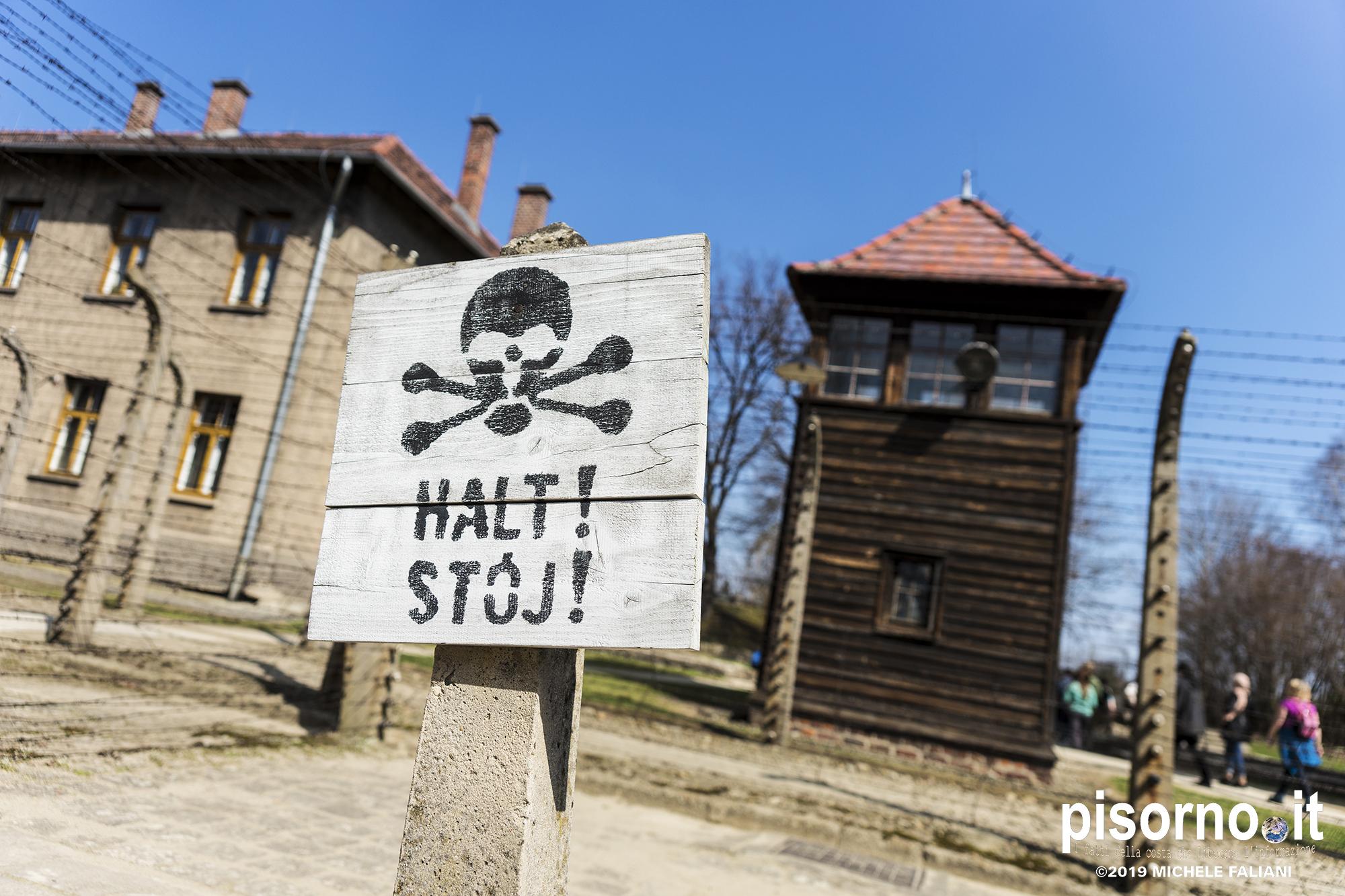 Auschwitz 43