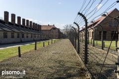 Auschwitz 02