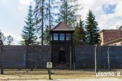 Auschwitz 27