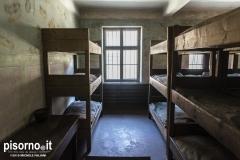 Auschwitz 36