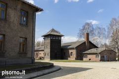 Auschwitz 45